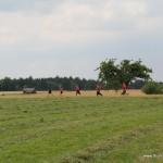 Sportlehrertag Schulamt GP 02.07.2014 15-45-26