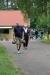 kaelblestraegermeisterschaften 29.05.2014 11-26-49